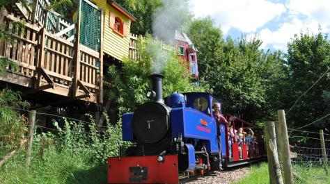 32900-perrygrove-railway-and-treetop-adventure-coleford-01