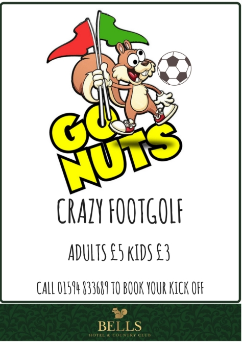 CRAZY FOOTGOLF POSTER (1)